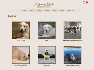 Lindenhoney Golden Retriever kennel
